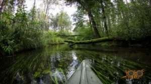 wyjazd integracyjny ze spływem kajakowym - Faurecia